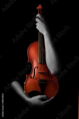 Fototapeta Violin and musician hands