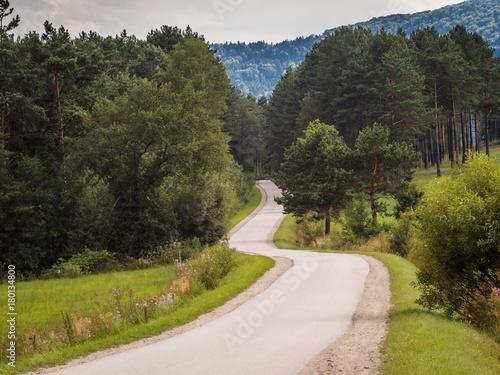 Foto op Plexiglas Weg in bos Droga Beskid Niski