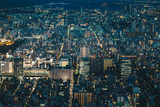 Japan capital Tokyo City Skyline as seen from above at night - 180147233