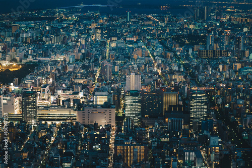 Plexiglas Tokio Japan capital Tokyo City Skyline as seen from above at night