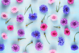Floral background with cornflowers on blue - 180172086