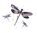 Watercolor set of dragonflies - 180180650