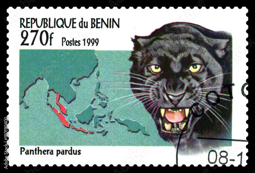 Plexiglas Panter Postage stamp. Cats. Black Panther.