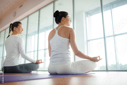 Poster Two girls keeping balance in pose of lotus in front of window in gym