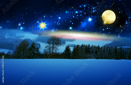 Foto op Canvas Heelal Christmas background with snow covered fir trees and full moon.