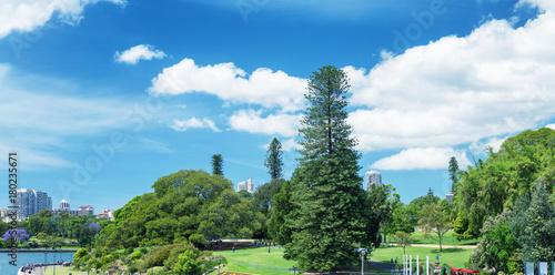 Papiers peints Sydney Royal Botanic Garden, Sydney