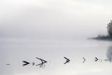 foggy river - 180248405