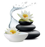 Water lily flowers and zen stone, bowl with water on white background. Vector illustration - 180252627