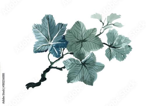 Keuken foto achterwand Vlinders in Grunge Hand drawn flowers isolated on white background