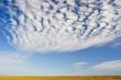 Tundra Sky