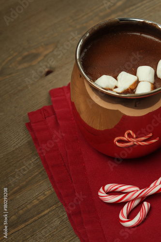 Tuinposter Chocolade Hot chocolate with marshmallows and candy canes