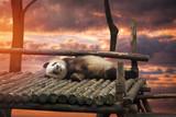 Big panda - 180319645