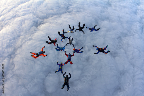 fototapeta na ścianę Skydivers in the sky