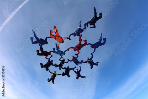 obraz PCV Skydivers in the sky