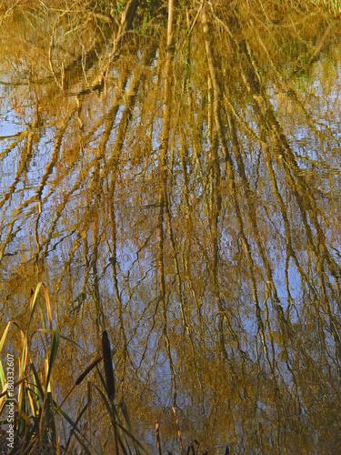 Foto op Canvas Rio de Janeiro reflejos en el agua en la zona del río , en Girona Cataluña España
