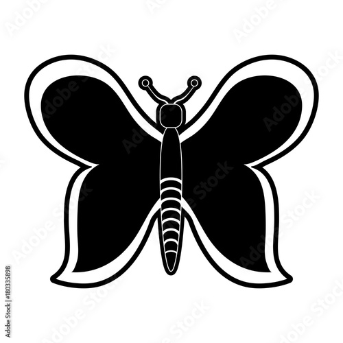 Beautiful buttefly symbol icon vector illustration graphic design