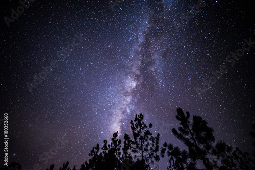 Fotobehang Heelal Night landscape with colorful Milky Way