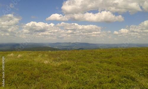 Fotobehang Donkergrijs hills forest clouds sky grass