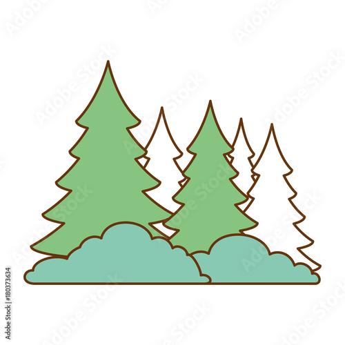 Fotobehang Wit pine forest scene icon vector illustration design