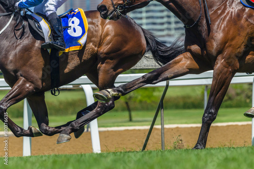 Horse Racing Action Hoofs Legs Heads Poster