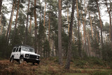 4x4 in the middle of the forest on a cloudy autumn day.