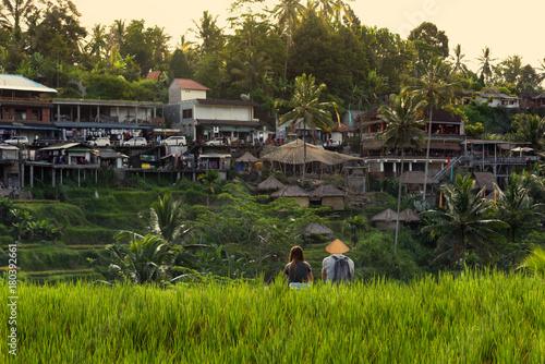 Plexiglas Bali Tellalang rice fields- Bali