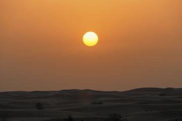 Dubai Desert in UAE