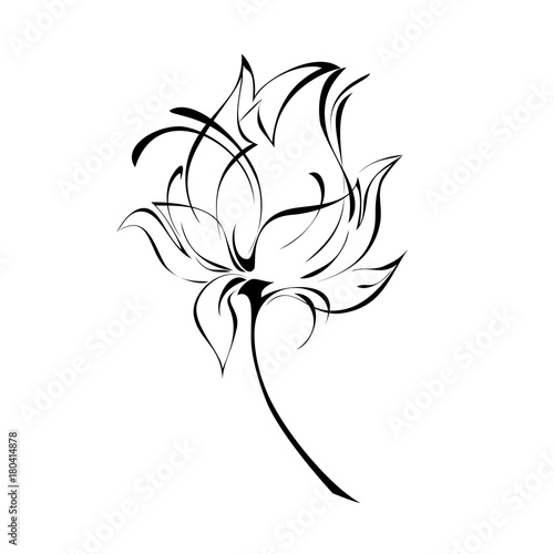 ornament 175. stylized flower in black lines on a white background