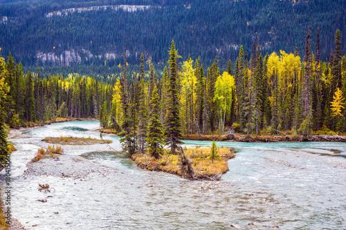 Aluminium Bergrivier Multicolored autumn forests