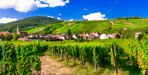 Fotobehang Freesurf Vineyards of France. Famous Alsace region with pictorial traditional villages