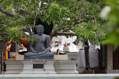 Staande foto Boeddha Buddha Figuren im Seema Malaka Tempel von Colombo in Sri Lanka