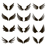 12 black and white wings icons