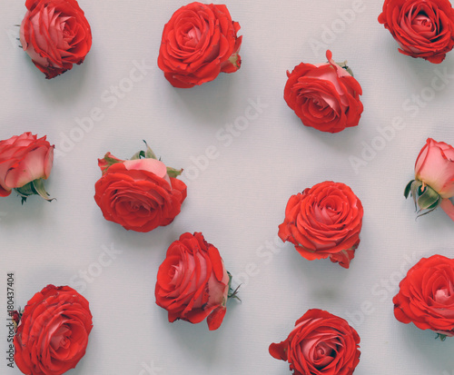 flowers buds of roses for congratulations on a holiday - 180437404