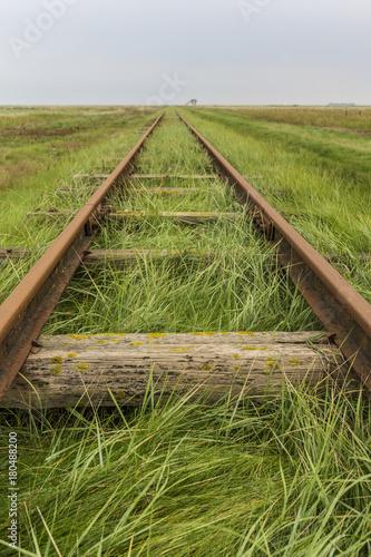 Papiers peints Voies ferrées Schienen fluchten am Horizont