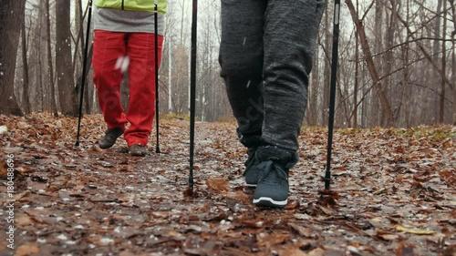 Nordic walking in autumn park - two senior ladies have training outdoor