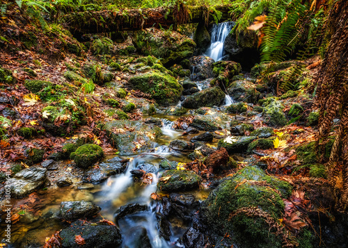 Tranquil Waterfall in Autumn