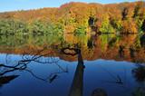 Spiegelung im Herthasee, Jasmunder Nationalpark, - 180530666