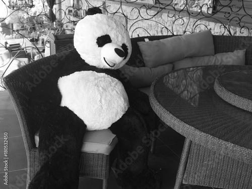 Fotobehang Panda REUNIÓN DE OSOS DE PELUCHE