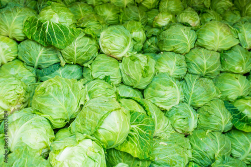 Foto op Canvas Brussel cabbage from field. cabbage background