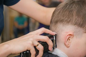 The girl shears the boy