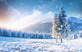 Mysterious winter landscape majestic mountains in winter. Magical winter snow covered tree. Photo greeting card. Bokeh light effect, soft filter. - 180572230