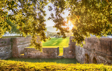 Medieval fortress wall in Lucca , Italy