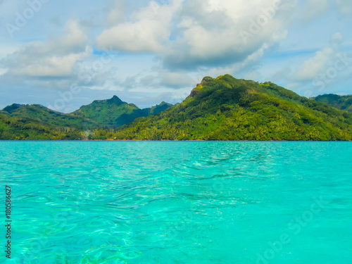 Deurstickers Groene koraal Dans le lagon de Huahiné
