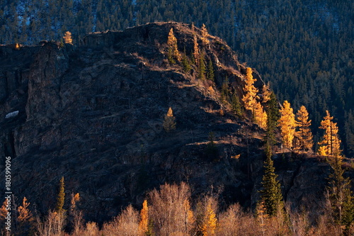 Fotobehang Zwart Autumn in the Altai Mountains