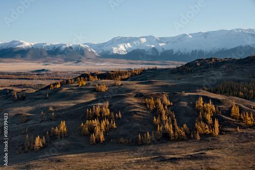 Fotobehang Diepbruine Autumn in the Altai Mountains