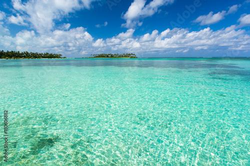 Staande foto Groene koraal Maldives beach