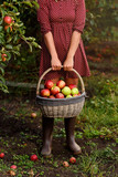 A young woman holding basket with apples - 180611625