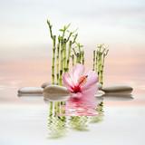 spa de piedras y flor - 180613885