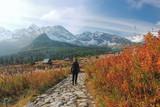 tatrzańska turystka na Hali Gąsienicowej