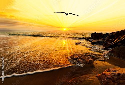 Sunset Ocean Bird Silhouette Poster